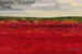 Blueberry-Fields-4 by Christine Hager-Braun