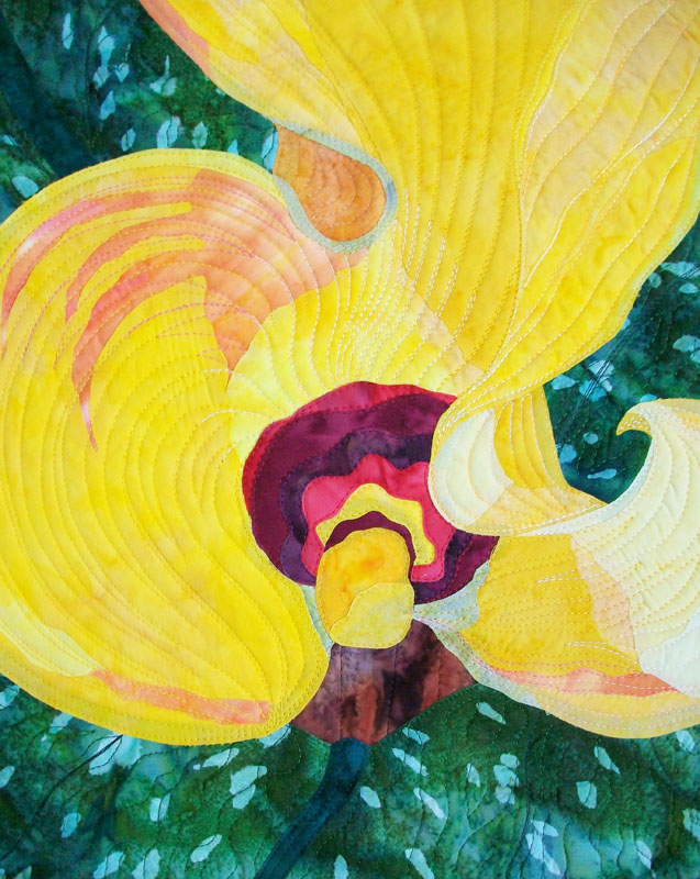 Calla Lily by Christine Hager-Braun