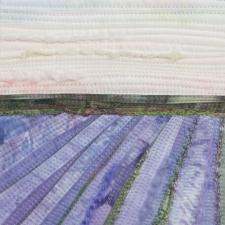 Lavender Fields #1