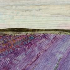 Lavender Fields #4