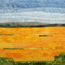 Sunflower Fields #1