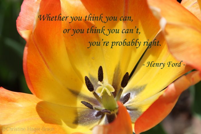 quote by Henry Ford, image by Christine Hager-Braun