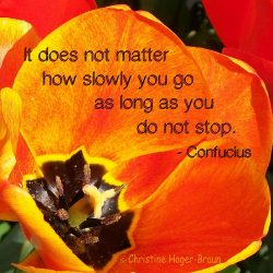Monday's Mantra: It Does Not Matter How Slowly You Go