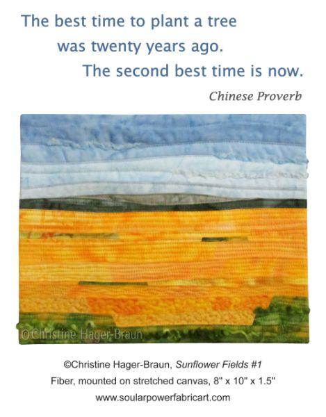 Sunflower Fields #1 by Christine Hager-Braun